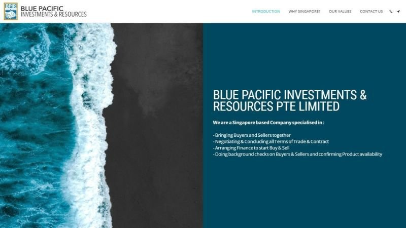 BLUE PACIFIC INVESTMENTS & RESOURCES