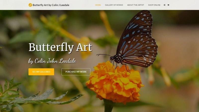 Butterfly Art by Colin John Leedale