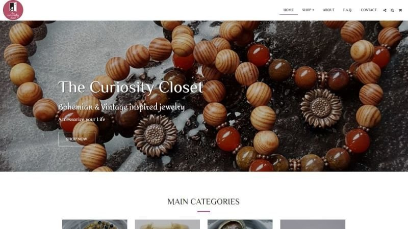 The Curiosity Closet