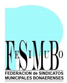 SOEMLP - FeSiMuBo