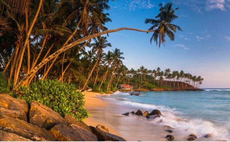 Beach Holiday - Sri Lanka