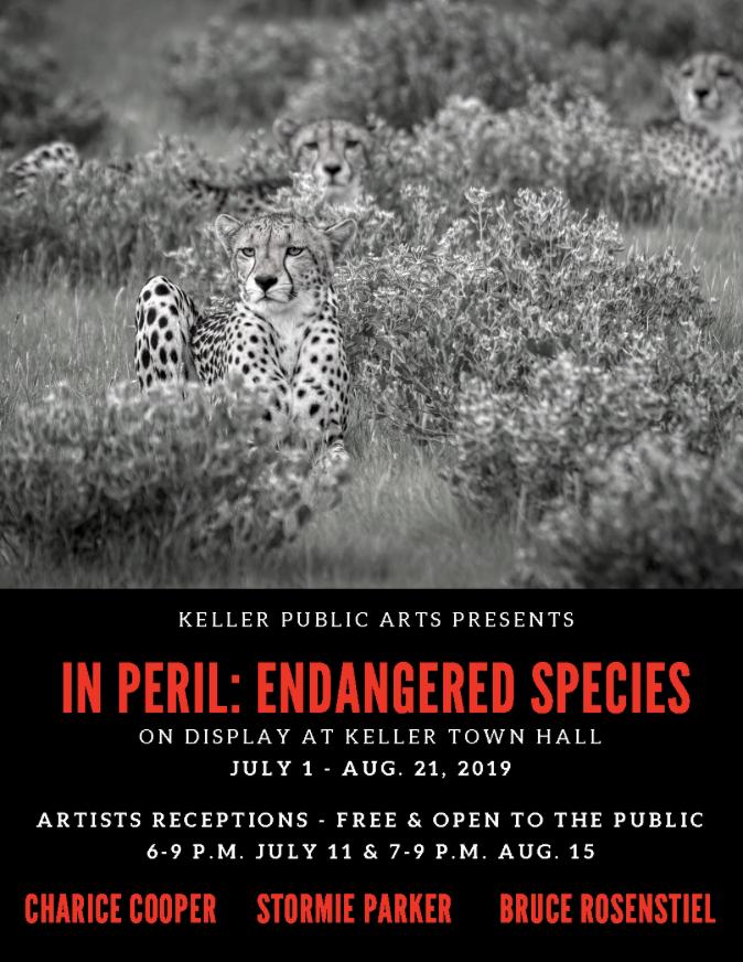 IN PERIL: ENDANGERED SPECIES - Keller Public Arts Exhibit
