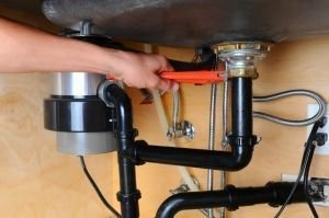 Finding the Perfect Garbage Disposal Gadget