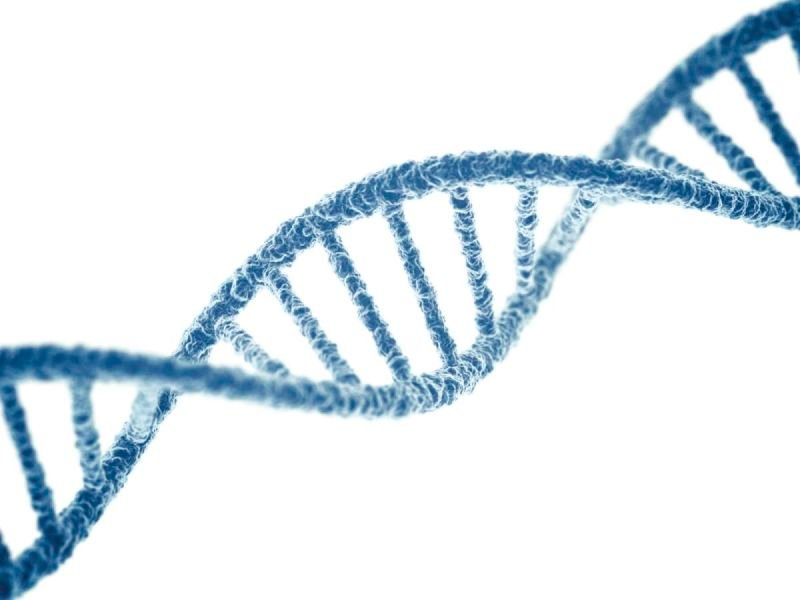 Study of DNA Genetic Testing