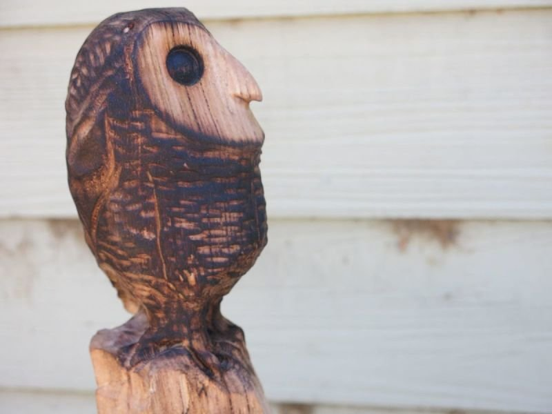 Napoleon Owl