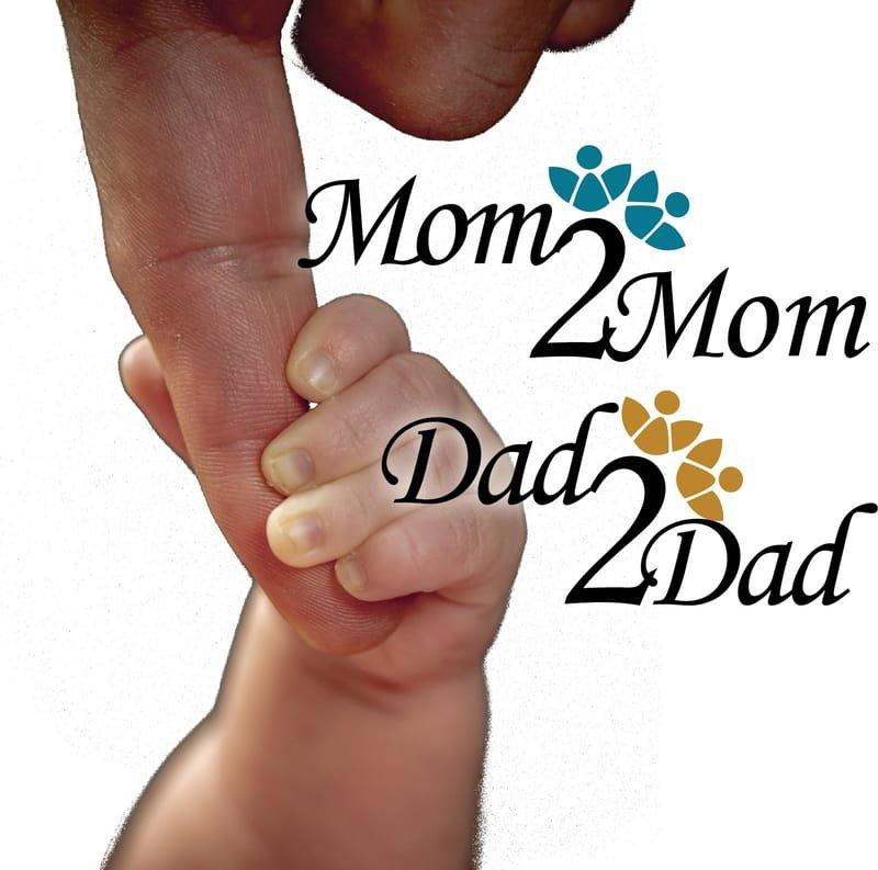 Individual Prenatal and Parenting Support