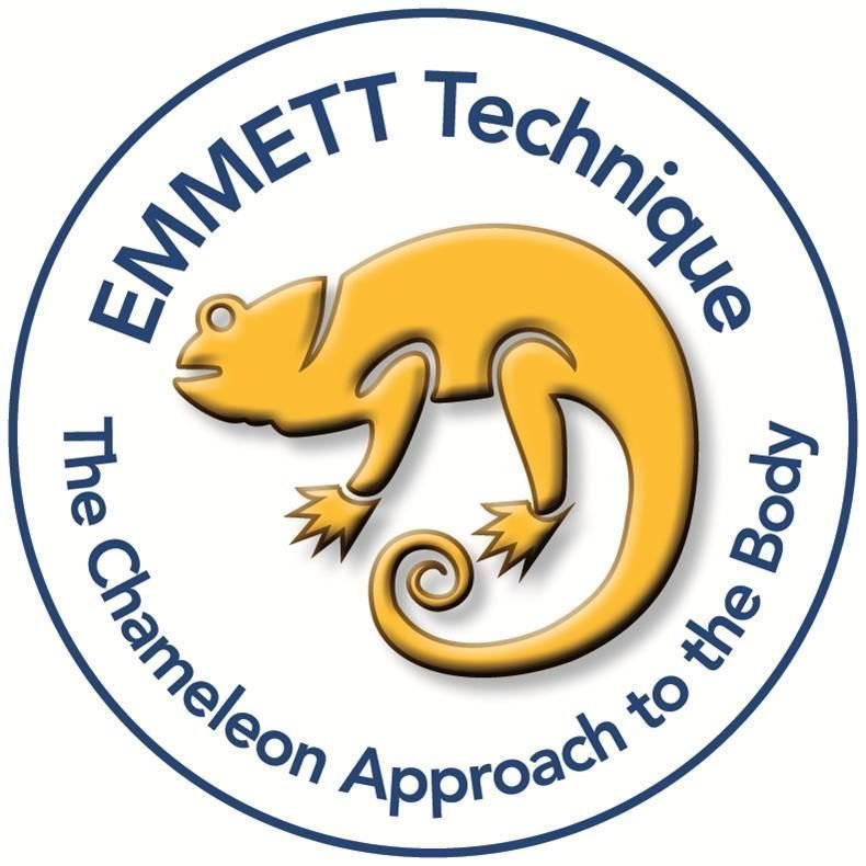 EMMETT Technique International Headquarter - CERTIFICATE OF PROFICIENCY EMMETT PRACTITIONER