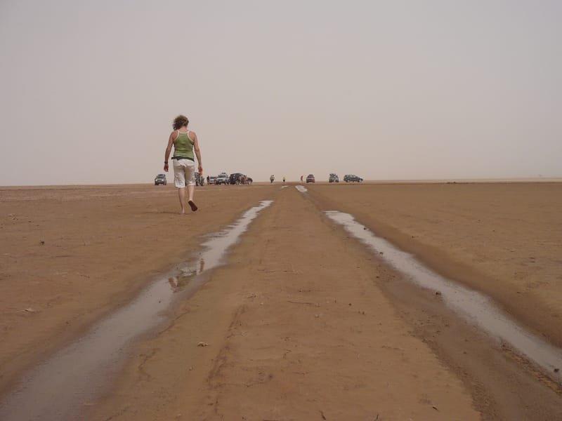 La senda del Iriki, abril 2009 - Vinuesa (Abdelaker)