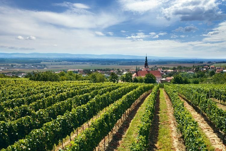 Česká republika - Morava - Slovácká podoblast