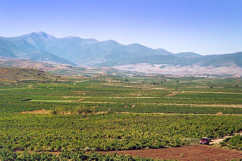 Španělsko - Rioja