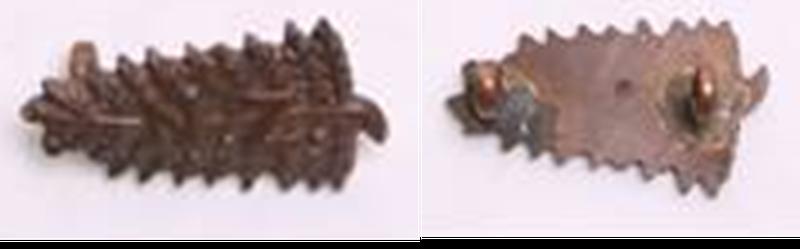 Squadron OSD Collar Badges