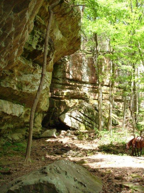 Lower Gap Trail 175A