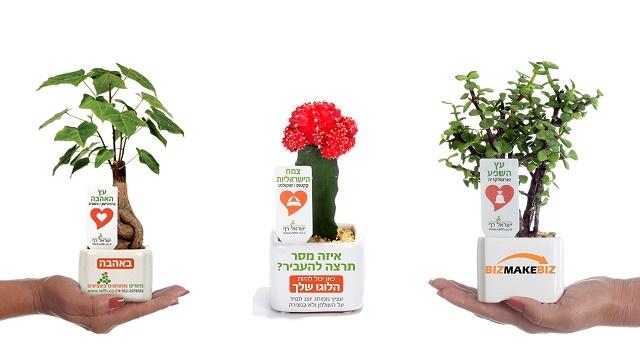 מתנות לסוף שנה למורים ולתלמדים, מסחר מסרים ממותגים בעציצים