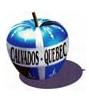 Membre Assoc. France-Québec