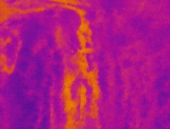 Différence de température au sol, les parties claires sont révélatrices d'une fuite d'eau sur réseau d'adduction.
