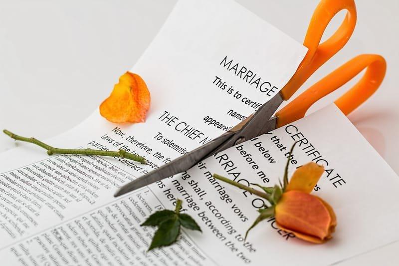 DIVORCE & CUSTODY CASES
