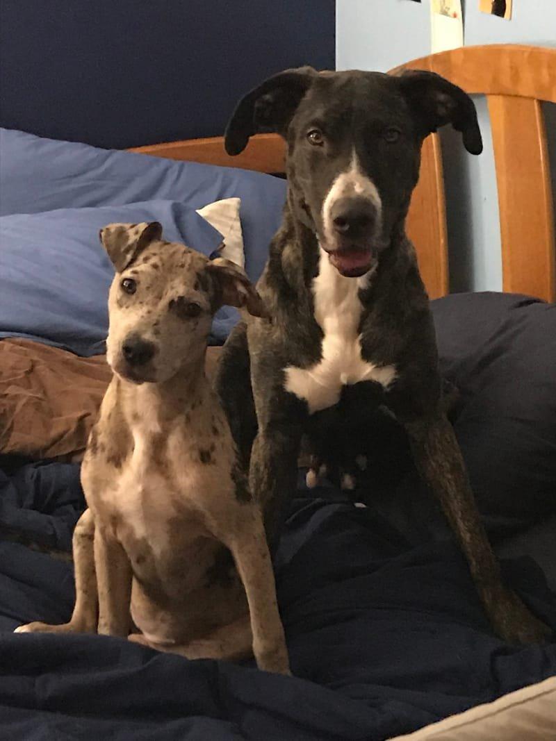 Mama Maisy & Cady