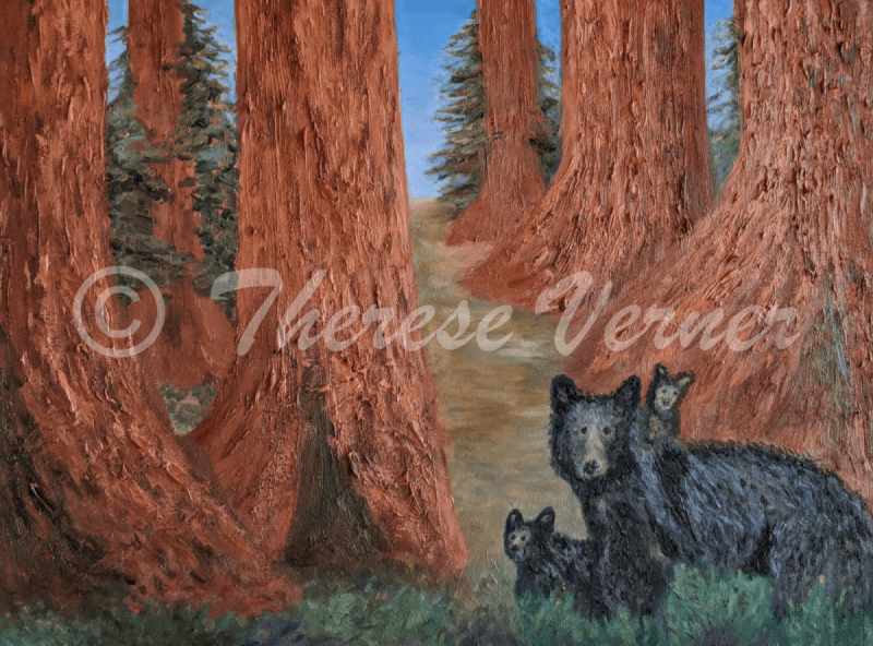 Bear Family in Sequoia