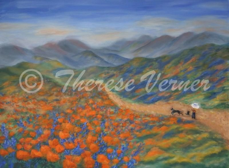 Hiking with Poppies