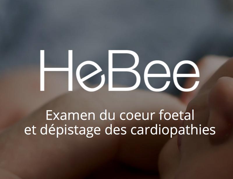 HeBee