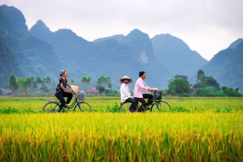 How To Choose The Perfect Vietnam Adventure Tour Package
