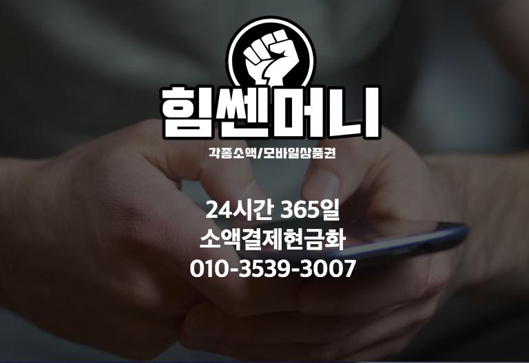 소액결제 현금화 소개