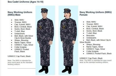 Uniform Tips