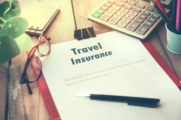 Choosing the Right Travel Insurer
