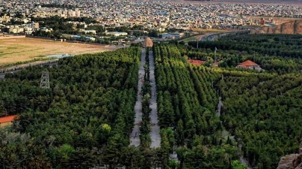 طراحی سایت، سئو و ساخت اپلیکیشن فروشگاهی در کرمان