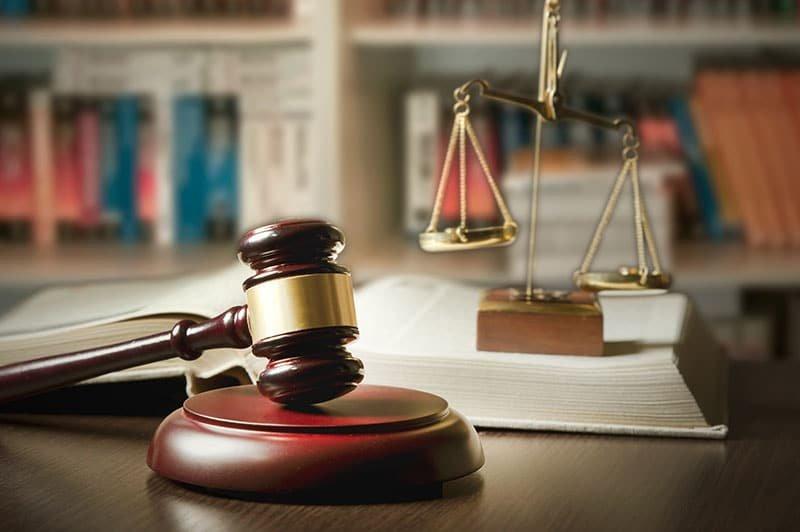 Litigation Support & Intel