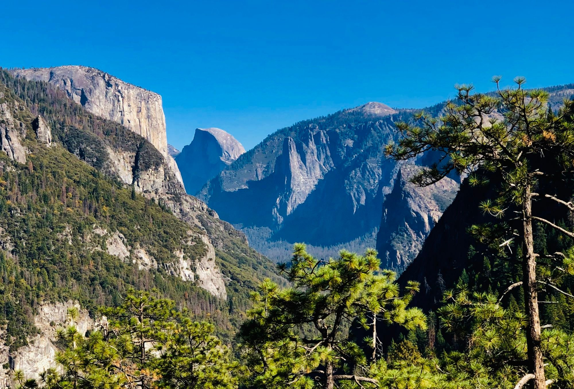 Making the Most Of Sequoia and Yosemite National Parks in 4 days/5