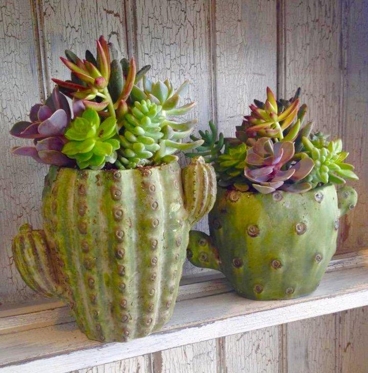 Succulent Cactus Pot Class