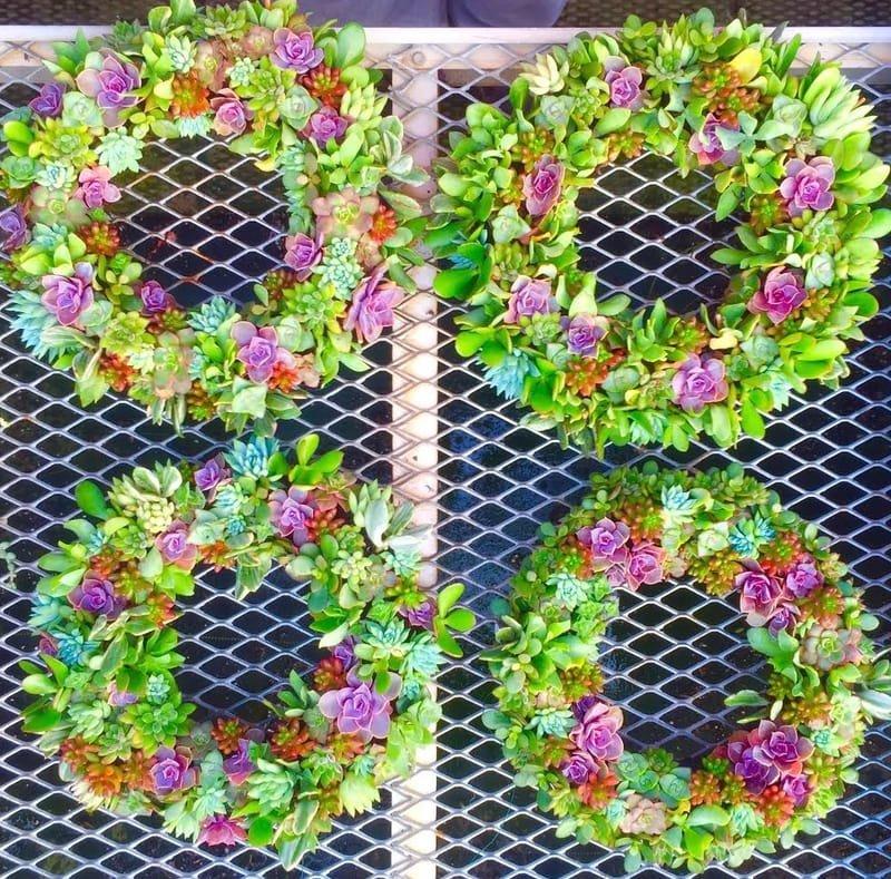Succulent Wreath Class