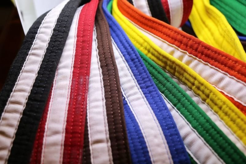 All grades from Blue belt to Brown & Red belt