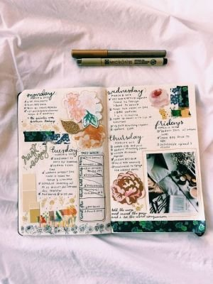 About Anne's diary