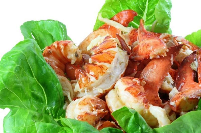 How You Will Benefit from Taking Lobster and Seafood Cuisine?