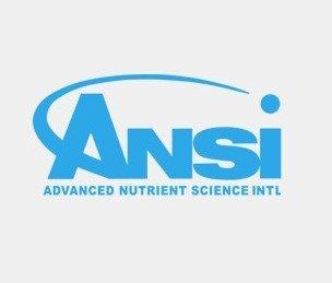 אנסי - Ansi
