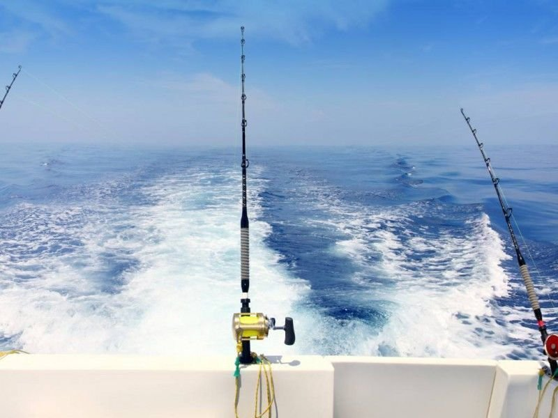 Learn About Fishing Charters