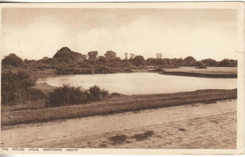 Maypole History, Dartford Heath, Kent