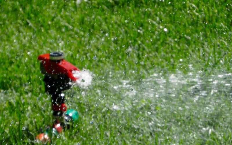 Hire A Professional Lawn Care Service In Louisville