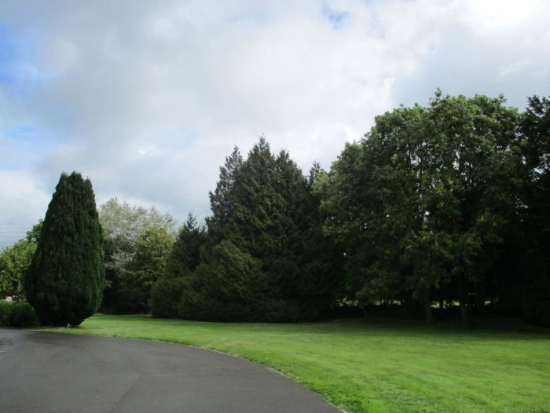 Natural and peaceful environment