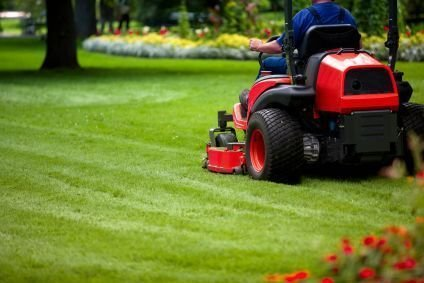 The Pros and Cons of DIY Vs. Professional Lawn Care and Maintenance
