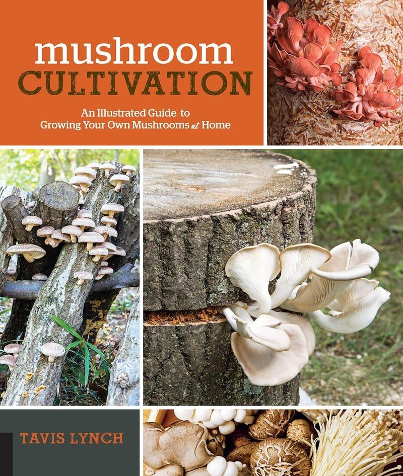 Mushroom Cultivation Seminar - Tavis Lynch