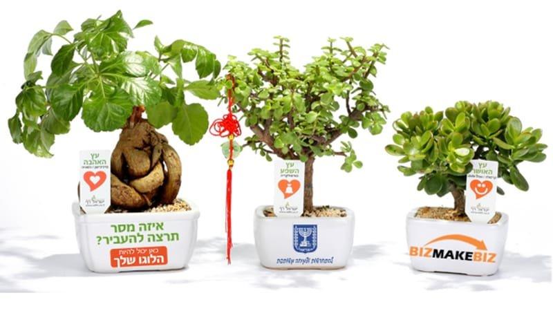 מתנות ממותגות לראש השנה, מתנות לאירועים עסקיים ופרטיים מסרים ממותגים בעציצים למתנות ולאירועים
