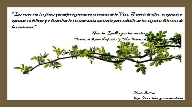 El blog de Úrsula: loc@s por los rosales (4)
