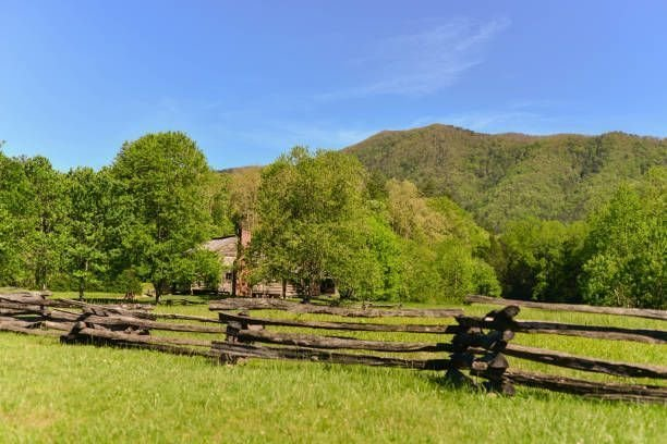 Split Rail Fence Reviews