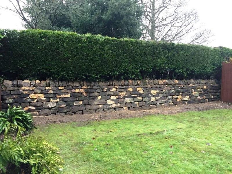 Ancient Causeway Garden wall