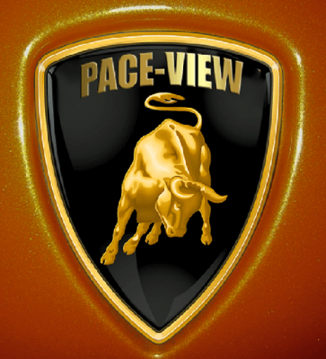 Welcome To Pace-View Handicapping