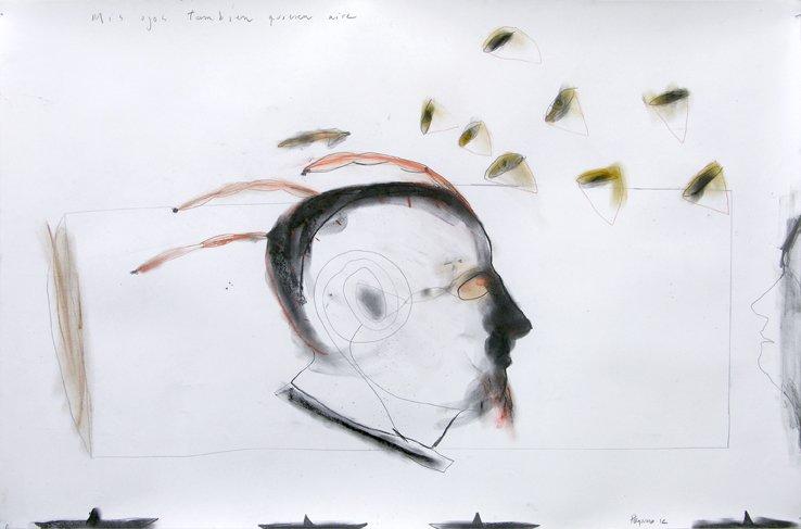 """MIS AMIGOS TAMBIEN QUIEREN AIRE"" . 2012 . 23"" x 35 . Sanguine, Charcoal on Paper"