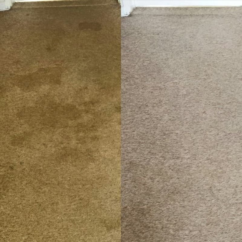 Filthy carpet before and after